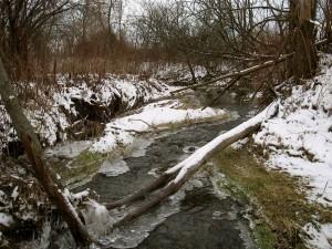 December brook