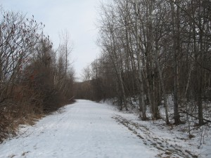 Rail Trail, Feb