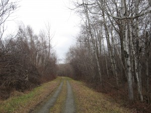 December Rail Trail