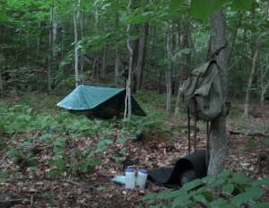 Catskill camp