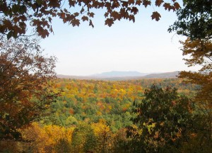 fall-color-lookout